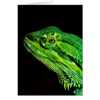 Bearded dragon lizard card