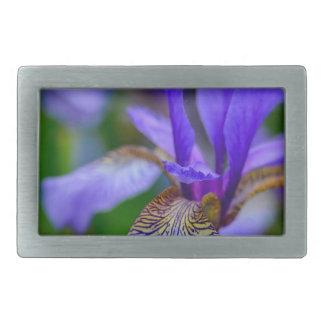 Bearded iris belt buckle