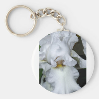 Bearded Iris In White Basic Round Button Keychain