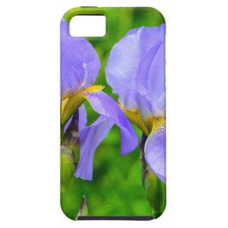 Bearded Iris iPhone 5 Case