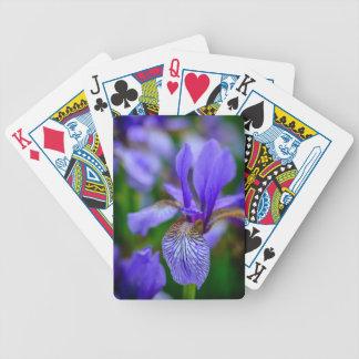 Bearded iris poker deck