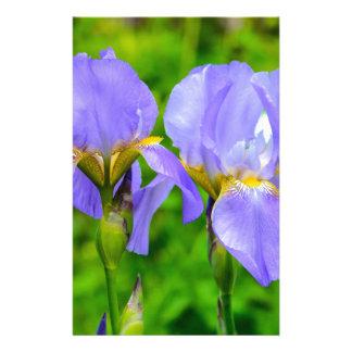 Bearded Iris Stationery