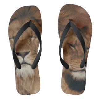 Beasts Flip Flops