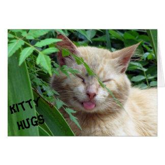 Beast's Kitty Hugs Birthday Card