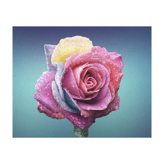 Beatiful Coloured Rose Canvas Print