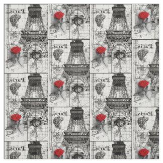 beatiful Paris Fabric
