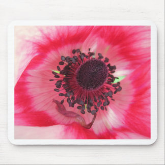 Beatiful Pink Flower Mouse Pad