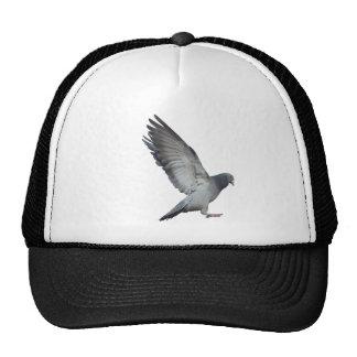Beating wings trucker hats