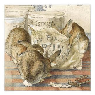 Beatrix Potter Bunny Rabbits Photograph