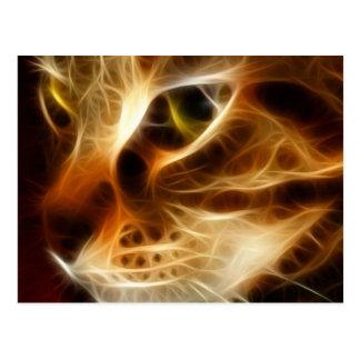 Beau chat fantomatique du feu cartes postales