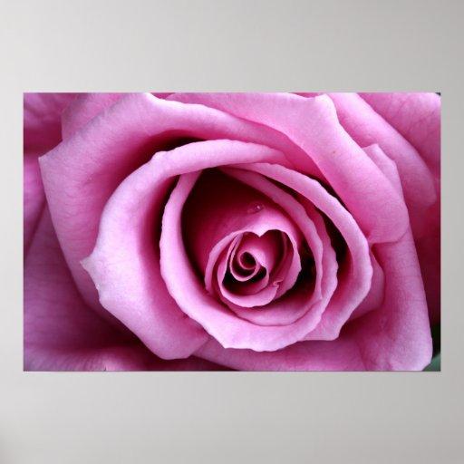 Beau dans le lilas posters