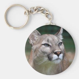 Beau keychain de photo de puma, porte-clés