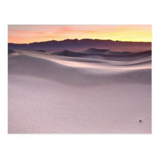 Beau lever de soleil de désert cartes postales