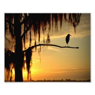 Beau lever de soleil de la Floride Photographie