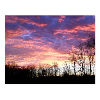 Beau lever de soleil d'hiver cartes postales
