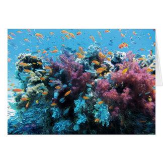 Beau monde sous-marin coloré carte de vœux