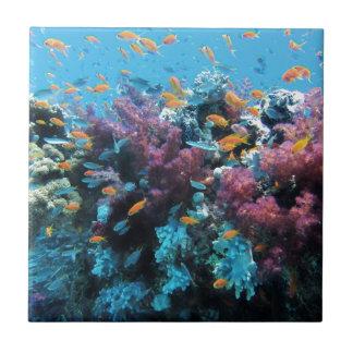 Beau monde sous-marin coloré petit carreau carré
