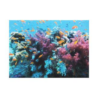 Beau monde sous-marin coloré toile tendue sur châssis