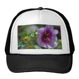 Beau pourpre de fleur casquettes