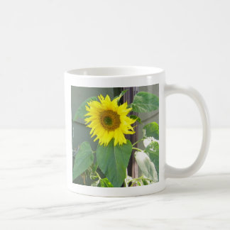 Beau tournesol jaune mug