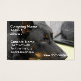 Beauceron  Business Cards