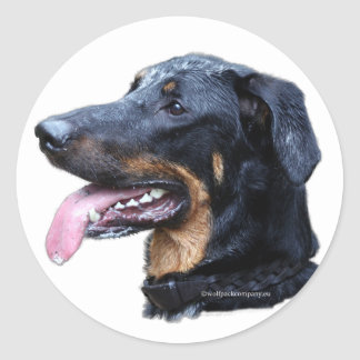 beauceron classic round sticker
