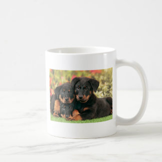 Beauceron Puppies Best Buds Coffee Mug