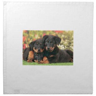 Beauceron Puppies Best Buds Napkin