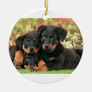 Beauceron Puppies Best Buds Round Ceramic Ornament