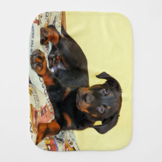 beauceron puppy baby burp cloths