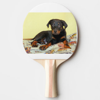 beauceron puppy ping pong paddle