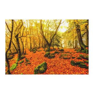 Beaulieu Woods Canvas Print