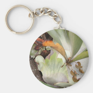 Beauteous Bromeliad Basic Round Button Keychain