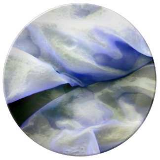 Beautiful Abstract Nature White and Blue Plate
