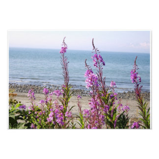 Beautiful Alaskan Scenery Photo Print