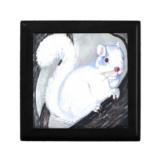 Beautiful Albino Squirrel Gift Box