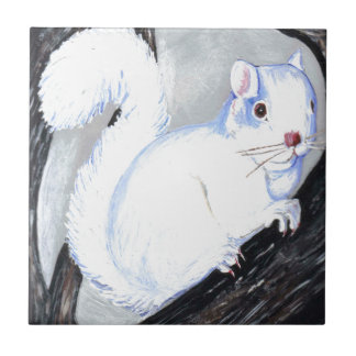 Beautiful Albino Squirrel Tile