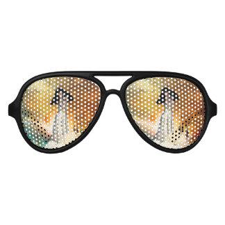 Beautiful amarican indian aviator sunglasses
