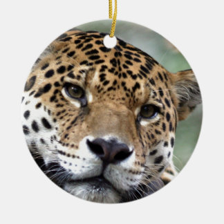 Beautiful Amazon jaguar Ceramic Ornament