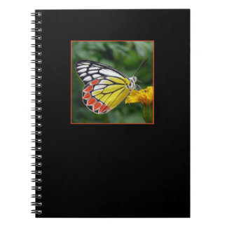 Beautiful and Colorful Butterfly Notebook