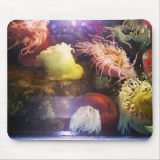 Beautiful and colorful soft coral mousepad