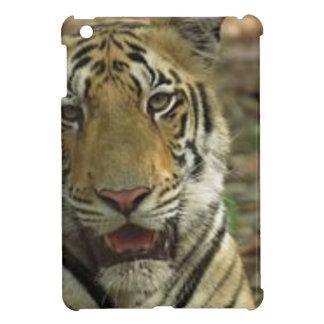 Beautiful and Smiling Tiger iPad Mini Cases