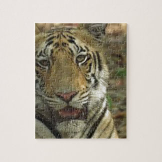 Beautiful and Smiling Tiger Jigsaw Puzzle