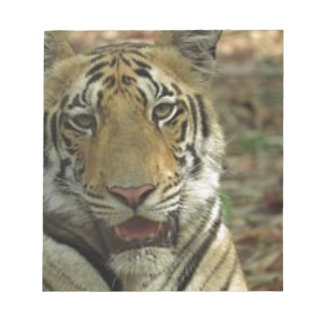 Beautiful and Smiling Tiger Notepad