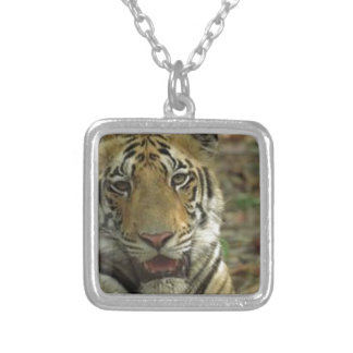 Beautiful and Smiling Tiger Silver Plated Necklace