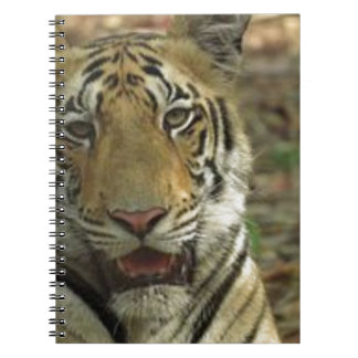 Beautiful and Smiling Tiger Spiral Notebooks