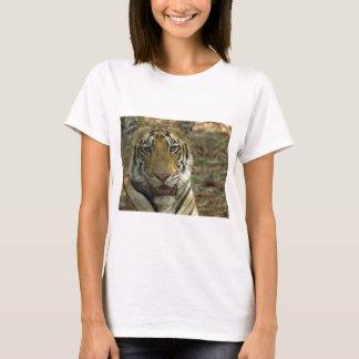 Beautiful and Smiling Tiger T-Shirt