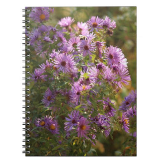 Beautiful Autumn Aster Spiral Notebook