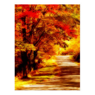 Beautiful Autumn Day Postcard