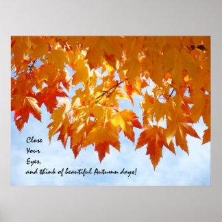 Beautiful Autumn Days art prints Healing Touch art Poster